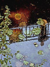 Wasserspiegelung-5 von Heidrun Carola Herrmann