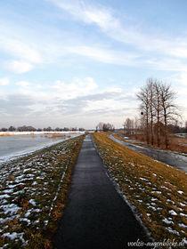Winterromantik am Oderdamm von voelzis-augenblicke