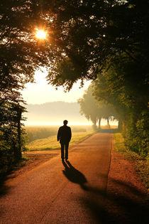Der Weg ins Licht von Bernhard Kaiser