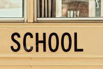 American School Bus Sign by Radu Bercan