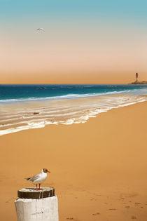 Ein einsamer Strand mit Möwe von Monika Juengling