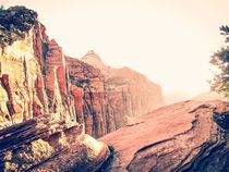 At Zion national park, USA in summer by timla