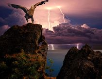 Eagle on a background of distant lightning flashes by Yuri Hope