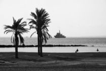 black and white palm beach by Jessy Libik