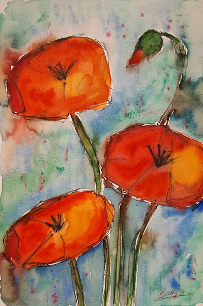Sketched-poppies