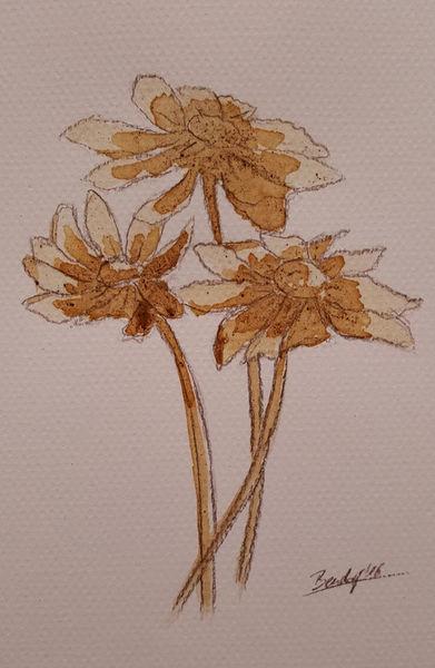 Coffee-flowers-ii