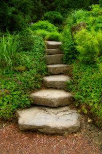 Stufen von Gabi Siebenhühner