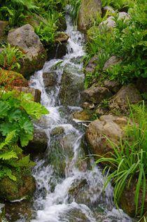 Wasserlauf von Gabi Siebenhühner