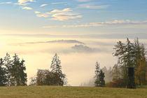 'Herbstmorgen über dem Nebel 3' von Bernhard Kaiser
