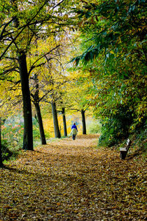 Noch ist Herbst, stilles Wandern by Hartmut Binder