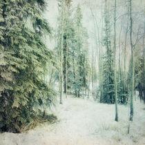 Wintry Woods von Priska  Wettstein
