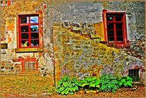 OLD Charm by Sandra  Vollmann