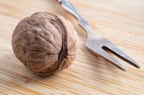 Macro view on walnuts and fork close-up by Vladislav Romensky
