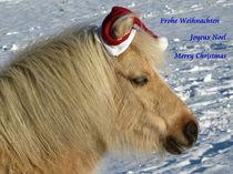 Frohe Weihnachten von Beatrix Daum
