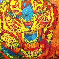 tiger by Amin Nazzer Nazzer Arango