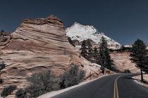 Zion National Park von Jay ZeroZero