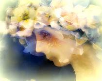 frühlinstraum, jugendblüte by hedy beith