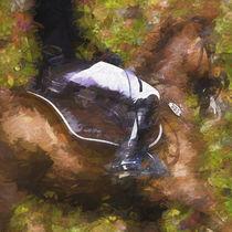 Pferd und Reiter von ullrichg