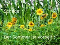 Sommer ade by Zarahzeta ®
