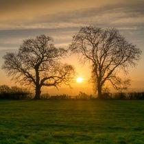Winter Sunrise 3 by David Tinsley