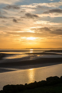 Severn Sundown von David Tinsley