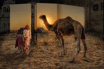 Camel Fair by Peter Hammer