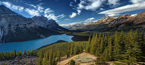 Afternoon at Lake Peyto by Peter Hammer