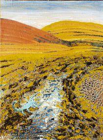 Wüste mit Skorpion von Heinz Sterzenbach
