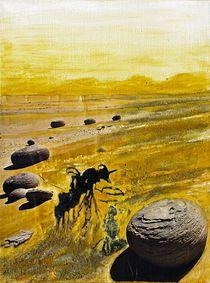 Wüste mit Steinkugeln  by Heinz Sterzenbach