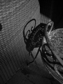 dining shadows by Dmitriy Sosna