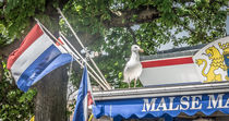 Seagull and the flag by Erik Mugira