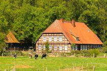 Niedersächsische Tradition by gscheffbuch