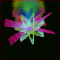 Weihnacht Stern 8 von Heide Pfannenschwarz