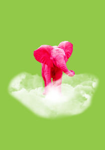 Pink elephant by lescapricesdefilles
