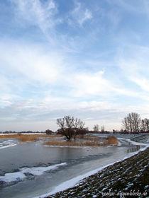 Eisiger Jahresbeginn by voelzis-augenblicke
