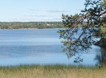 Summer view of the river. von Andrey Lipinskiy