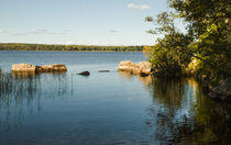 Nature background river Bay by Andrey Lipinskiy