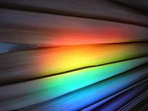 Rainbow on a palm von Angelika Thomson
