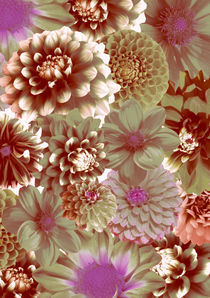 Pastel flowers by lescapricesdefilles