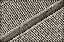 Holzstruktur von kiwar