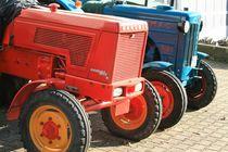 Traktorensenioren von Angelika Thomson