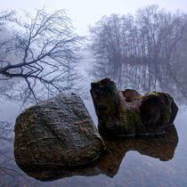 Rock and Stump in Square by Keld Bach