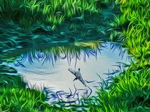 Reflections by John Wain
