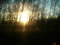 Sonne bricht Himmel4 by Sarah Greulich
