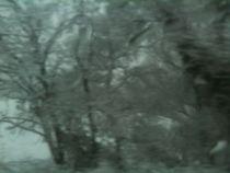 Außen kalt, Innen auch1 by Sarah Greulich
