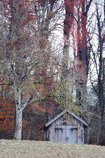 Witch's cottage von Photo-Art Gabi Lahl