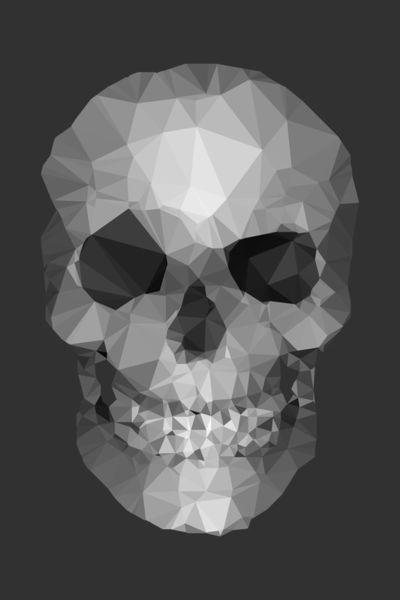 Polygons-skull-dg
