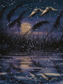 Night Flight - It starts to snow by Chris Berger