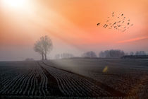One Day in November by photoart-mrs