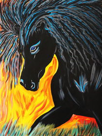 BLACK HORSE by Nora Shepley